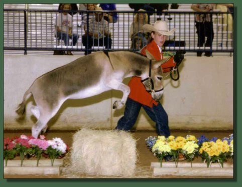 Foxy & Brittney Wilhoit at the 2004 Nationals in Waco, Texas